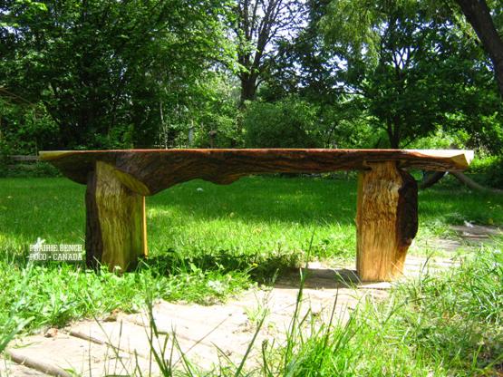 Prairie Bench oak slab 6