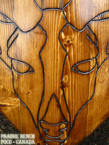 Prairie Bench Stag Shield 9