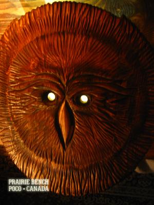 Prairie Bench owl 1a