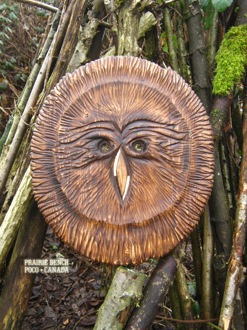 prairie bench owl mask 273 2